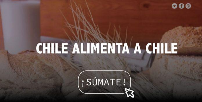 Campaña CHILE ALIMENTA CHILE